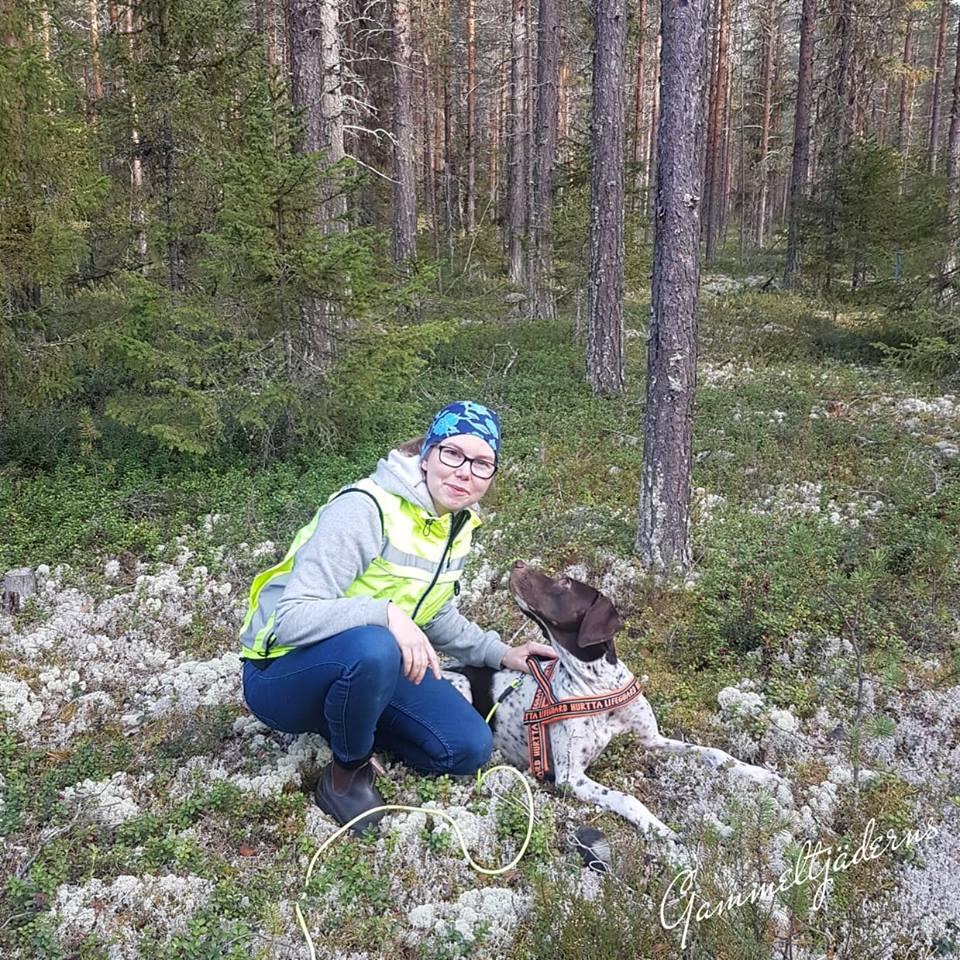 J SEUCh Charletans Gucci är likt många Gammel Danska Hönsehundar en utmärkt hund för viltspår.